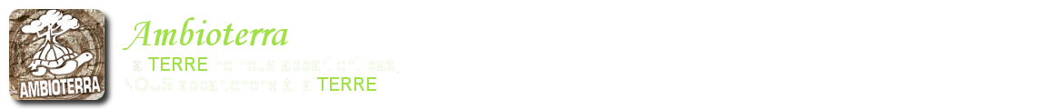 Ambioterra